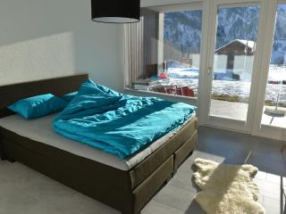 Holiday Apartment with Sun Terrace - Disentis vacation rentals