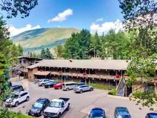 Walk to slopes from mountain condo close to gondola & town! - Aspen vacation rentals
