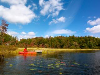 NONI'S JOY!  QUINTESSENTIAL LAKE COUNTRY HOME - Caroga Lake vacation rentals