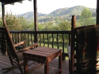 THE LIL' RUSTIC CABIN - Image 1 - Franklin - rentals