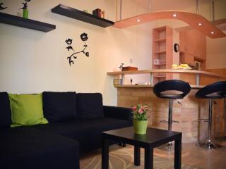 Cozy Little Apartment - Szeged vacation rentals