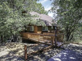 Kiki's Chalet #1548 ~ RA61011 - Big Bear City vacation rentals