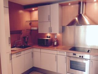 Dublin City Apartment in mature grounds. - Dublin vacation rentals