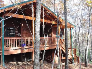 Private, Pet Friendly Cabin in Blue Ridge Georgia - Jeffersonville vacation rentals