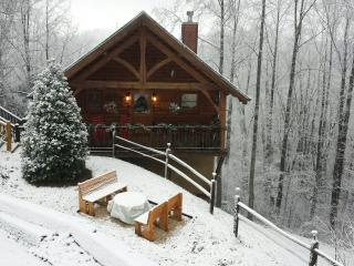 Romantic cabin,100 mile view! Privacy, AMENITIES! - Pigeon Forge vacation rentals