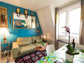 2 bedrooms in the center of Paris ,60 sqm, on 6th floor with elevator. . Private kitchen and bathroom - Paris vacation rentals