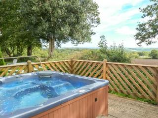 3 DARTMOOR LODGE, pet friendly, country holiday cottage, with hot tub in Gunnislake Near Dartmoor, Ref 4544 - Gunnislake vacation rentals