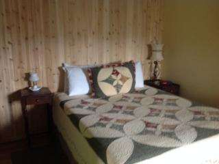 White mountains one room cabin - Thornton vacation rentals