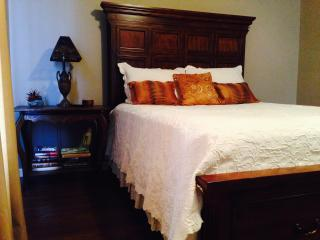 Perfect 2 Bedroom Condo-Book 7 nights-Great Deals! - Greenville vacation rentals