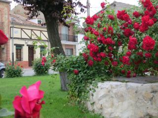 Quiet house in a lovely village - Sauquillo de Cabezas vacation rentals